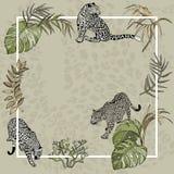 Fondo de la bandera del verano con las hojas tropicales y el leopardo salvaje ilustración del vector