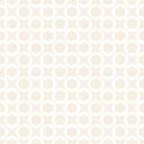 Fondo de la boda con las rosas blancas y las perlas. Foto de archivo libre de regalías