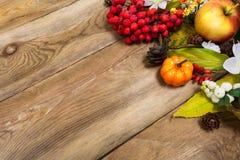 Fondo de la caída con la calabaza, manzana, hojas de otoño, berrie del serbal Fotos de archivo libres de regalías