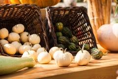 Fondo de la calabaza de la cosecha del otoño Imagen de archivo