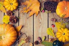 Fondo de la cena de la acción de gracias Hojas de la calabaza y de la caída de otoño en la tabla de madera Fotografía de archivo libre de regalías