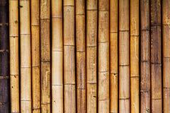 Viejo Fondo De Bambu Seco Ilustracion Del Vector Ilustracion De - Bambu-seco