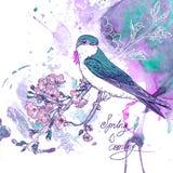 Fondo de la cereza de la primavera con los pájaros libre illustration