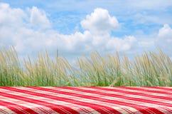 Fondo de la comida campestre con la mesa de picnic Foto de archivo libre de regalías