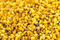 Fondo de la comida del polen de la abeja Foto de archivo libre de regalías