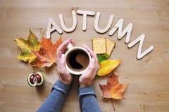 Fondo de la composición del humor del otoño Imagenes de archivo