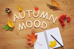 Fondo de la composición del humor del otoño Imagen de archivo