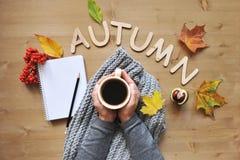 Fondo de la composición del humor del otoño Fotos de archivo libres de regalías