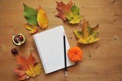 Fondo de la composición del otoño Foto de archivo