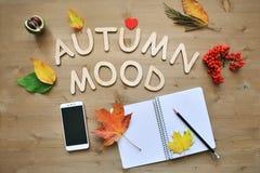 Fondo de la composición del otoño Foto de archivo libre de regalías
