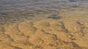 Fondo de la corriente del río almacen de video