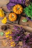 Fondo de la cosecha del otoño de la caída con la calabaza festiva decorativa de la acción de gracias Imagen de archivo