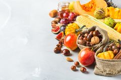 Fondo de la cosecha del otoño de la caída con maíz de la castaña de la manzana de la calabaza Foto de archivo libre de regalías