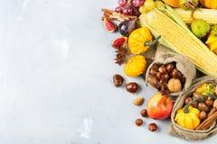 Fondo de la cosecha del otoño de la caída con maíz de la castaña de la manzana de la calabaza Imágenes de archivo libres de regalías