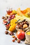 Fondo de la cosecha del otoño de la caída con maíz de la castaña de la manzana de la calabaza Fotografía de archivo libre de regalías