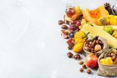 Fondo de la cosecha del otoño de la caída con maíz de la castaña de la manzana de la calabaza Imagen de archivo