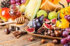 Fondo de la cosecha del otoño de la caída con maíz de la castaña de la manzana de la calabaza Fotos de archivo libres de regalías