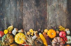Fondo de la cosecha o de la acción de gracias Imagen de archivo libre de regalías