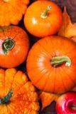 Fondo de la cosecha o de la acción de gracias con las calabazas, las manzanas y fal Foto de archivo