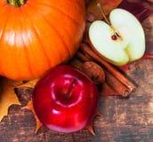 Fondo de la cosecha o de la acción de gracias con las calabazas, las manzanas y fal Fotografía de archivo libre de regalías