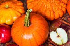 Fondo de la cosecha o de la acción de gracias con las calabazas, las manzanas y fal Imagen de archivo libre de regalías