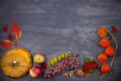 Fondo de la cosecha o de la acción de gracias Concepto de la comida del día de la acción de gracias El otoño da fruto, las verdur Imagen de archivo libre de regalías