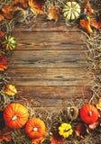 Fondo de la cosecha o de la acción de gracias con las calabazas y la paja Fotografía de archivo