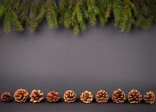Fondo de la decoración de la Navidad o del Año Nuevo: ramas de la estafa del abeto Foto de archivo