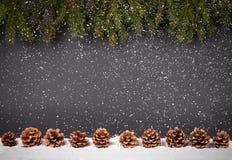 Fondo de la decoración de la Navidad o del Año Nuevo: ramas del piel-árbol, Imagen de archivo libre de regalías
