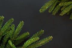 Fondo de la decoración de la Navidad Ramas de árbol de abeto en fondo negro con el espacio de la copia Visión superior Modelo Fotos de archivo