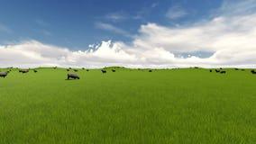 Fondo de la diversión del verano Animales del campo Paisaje rural del verano Ovejas del cordero stock de ilustración