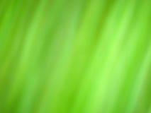 Fondo de la ecología de la hierba verde foto de archivo