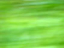Fondo de la ecología de la hierba verde imagenes de archivo