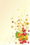 Fondo de la estación del otoño o de caída Imágenes de archivo libres de regalías