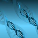 Fondo de la estructura de la molécula de la DNA Fotografía de archivo libre de regalías