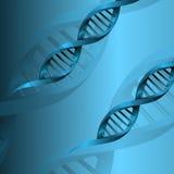 Fondo de la estructura de la molécula de la DNA Imagen de archivo