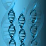 Fondo de la estructura de la molécula de la DNA Fotos de archivo