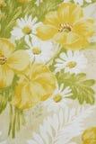 Fondo de la flor Imagen de archivo libre de regalías