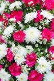 Fondo de la flor fotos de archivo