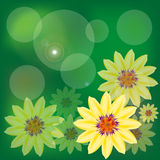 Fondo de la flor. libre illustration