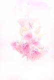 Fondo de la flor Imágenes de archivo libres de regalías