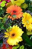 Fondo de la flor con las flores brillantes Fotos de archivo