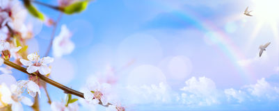 Fondo de la flor de Art Spring; Paisaje de Pascua foto de archivo libre de regalías