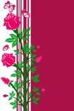 Fondo de la flor de rosas y de mariposas Fotografía de archivo libre de regalías
