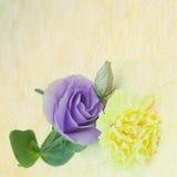 Fondo de la flor del vintage Fotos de archivo