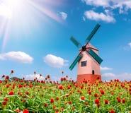Fondo de la flor y del molino de viento y del cielo azul del amaranto de globo Fotos de archivo