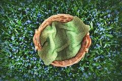 Fondo de la fotografía de Digitaces del campo de flor de la primavera y del apoyo de madera de la cesta imagen de archivo