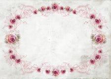Fondo de la frontera de las rosas Imagen de archivo libre de regalías