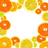 Fondo de la fruta cítrica Imagenes de archivo