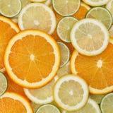 Fondo de la fruta de la naranja, del limón y de las cales Imagen de archivo libre de regalías